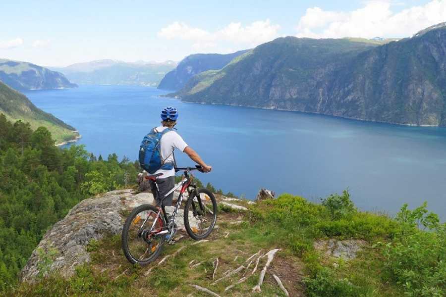 FRAM One way trip Stranda - Ålesund