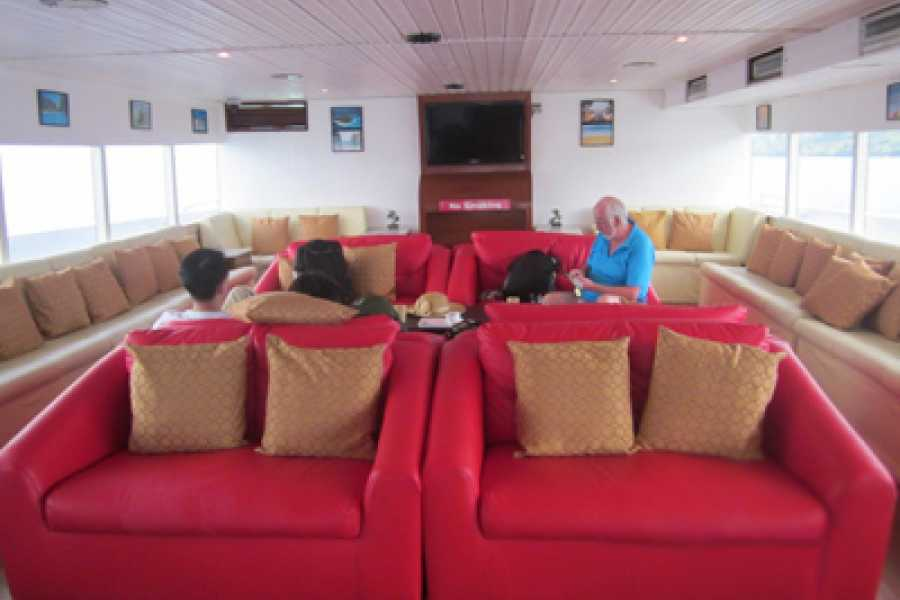 AMICI MIEI PHUKET TRAVEL AGENCY PHI PHI ISLAND TOUR WITH BIG BOAT