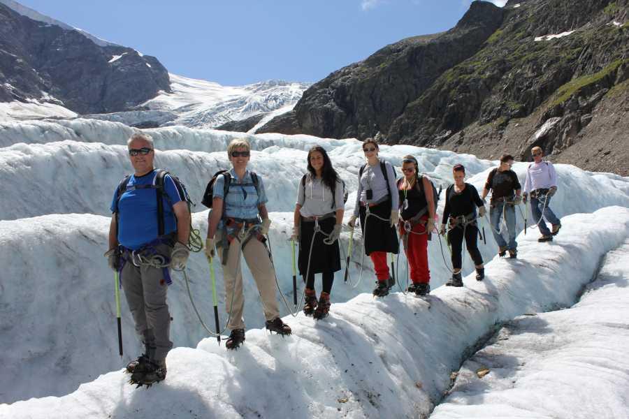 Swiss Alpine Guides Gletschertrek - Tagestour Spezial