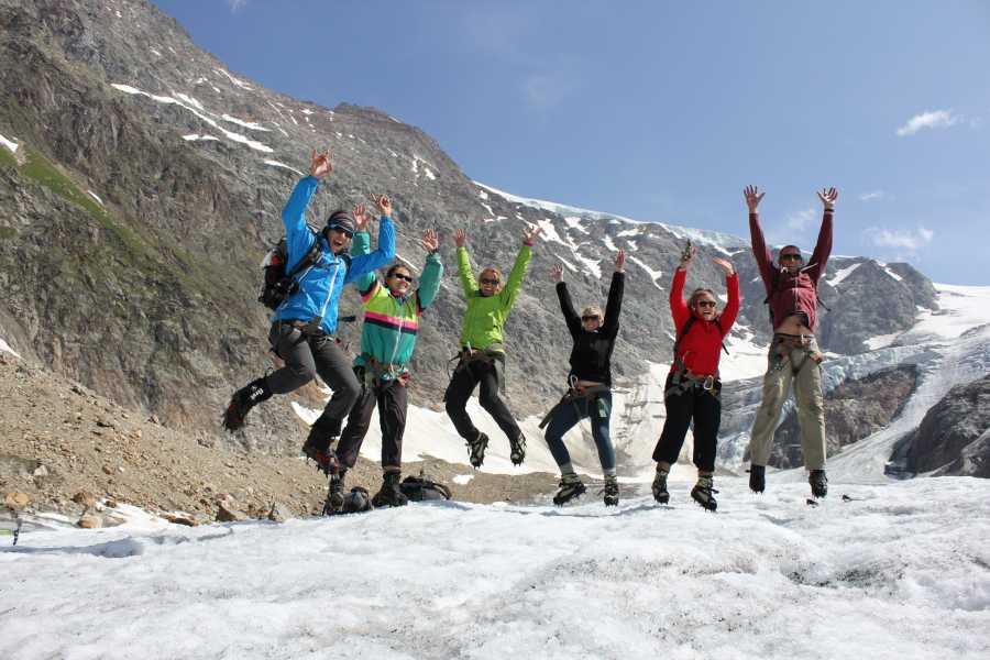 Swiss Alpine Guides Glacier Trek Special - Day Tour