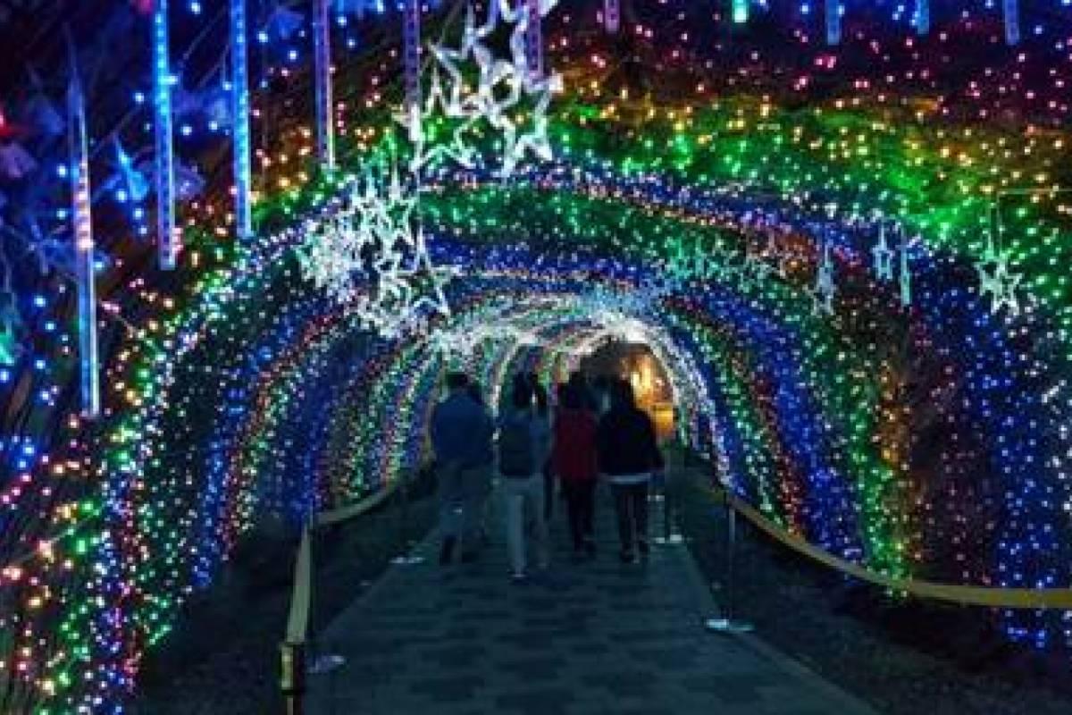 Kim's Travel 51 Gwangmyeong Cave & Onemount Snow Park Tour