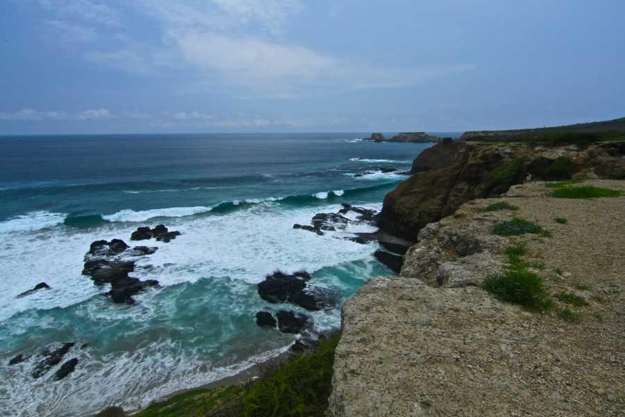 PALO SANTO TRAVEL ISLA DE LA PLATA | SNORKEL | MARINE TURTLES | PUERTO LOPEZ
