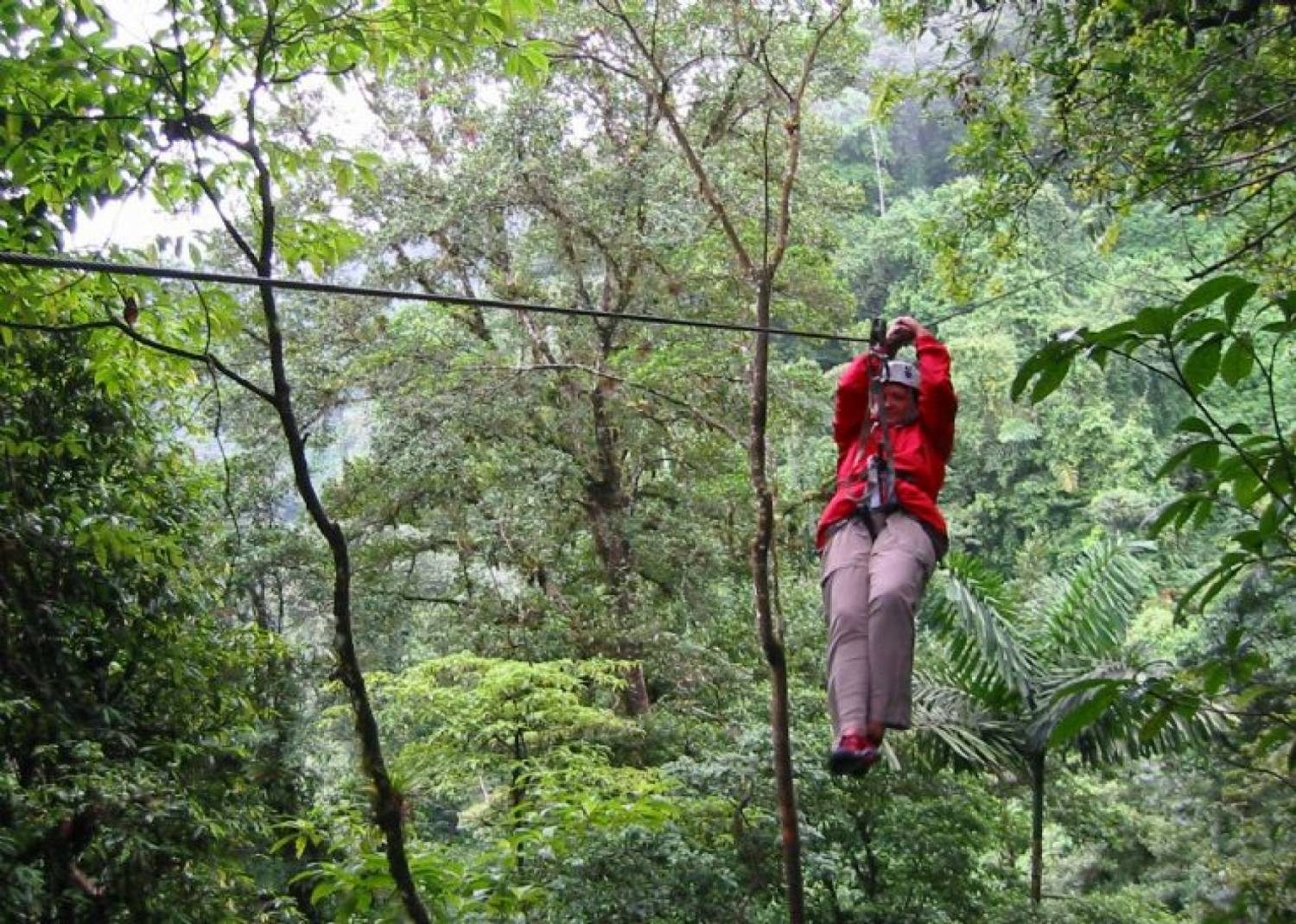 ... Congo Trail Canopy Tour Original Canopy Zip Line Tour ... & Original Canopy Zip Line Tour - Congo Trail Canopy Tour Your family ...