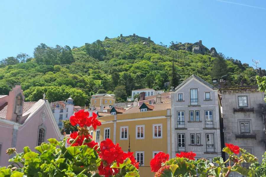 Lisbon on Wheels Arrábida and Sintra - Two Magic Mountains Tour
