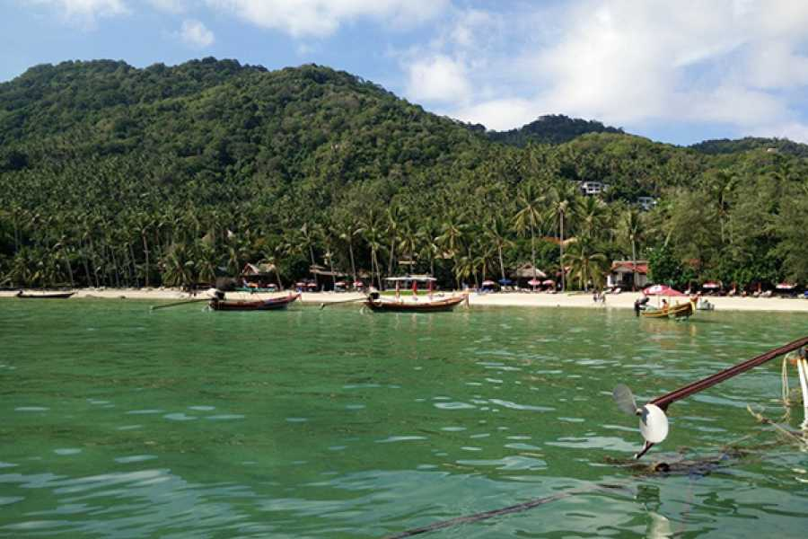 AMICI MIEI PHUKET TRAVEL AGENCY KOH TAO & NANG YUAN TOUR AM127