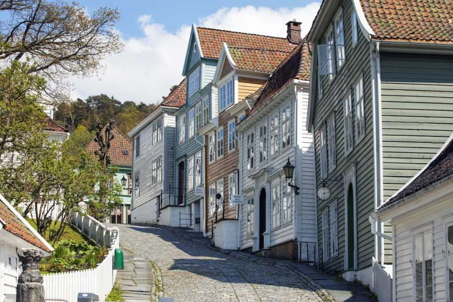 Norway Insight City bike and mountain hike