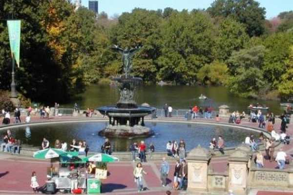 1-2 hour NYC Central Park Sightseeing Pedicab Tour