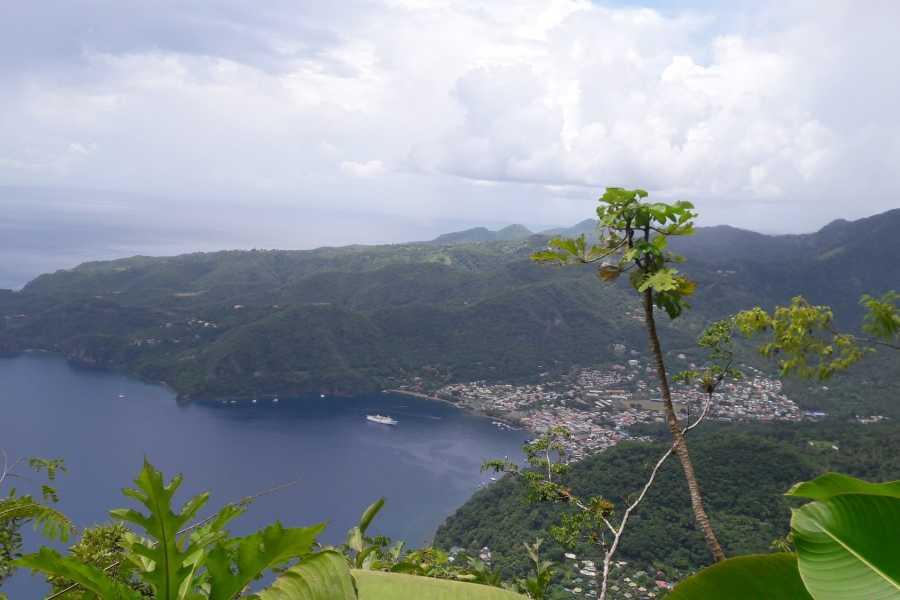 Eco Adventures Saint Lucia Tours World Heritage Pitons Adventure
