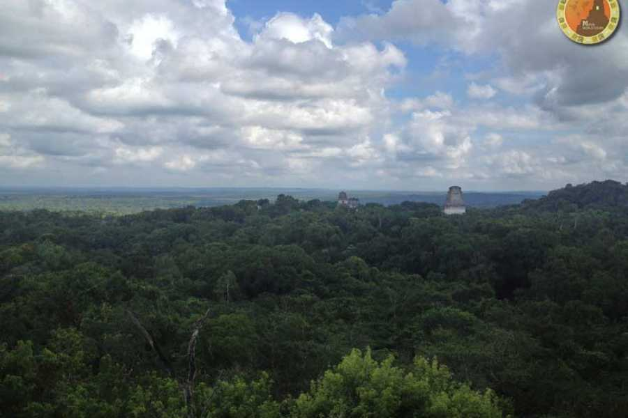 Maya World Tours Tikal One Day Tour From Flores without lunch
