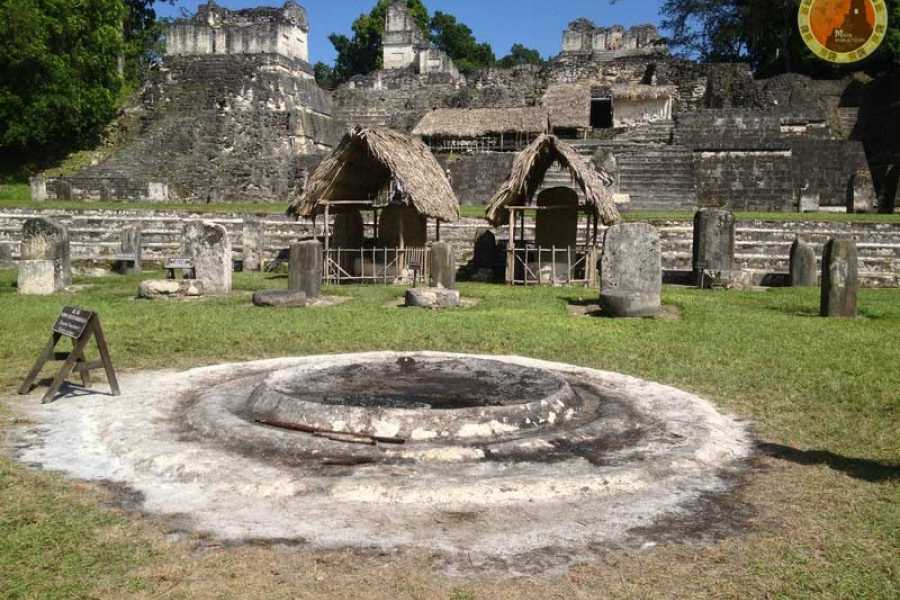 Maya World Tours Tikal One Day Tour From Flores