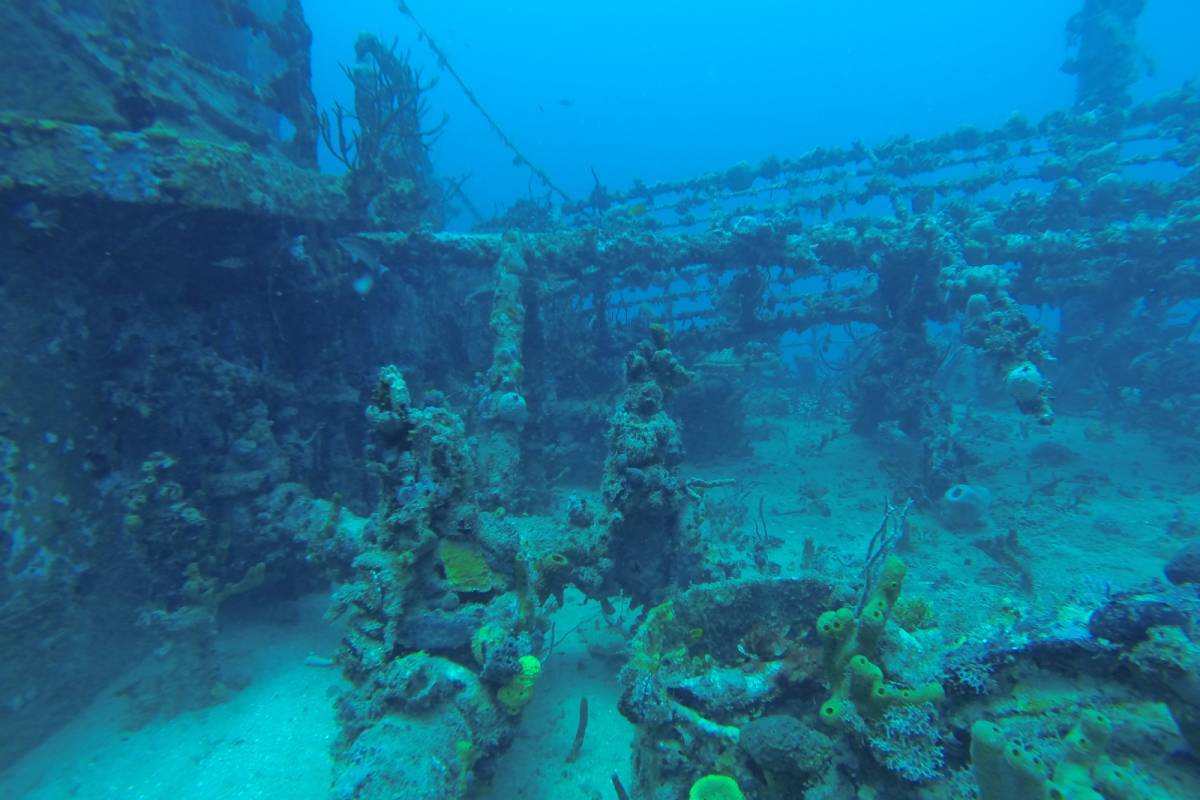 Marina Blue Haiti PADI Wreck Diving Specialty course