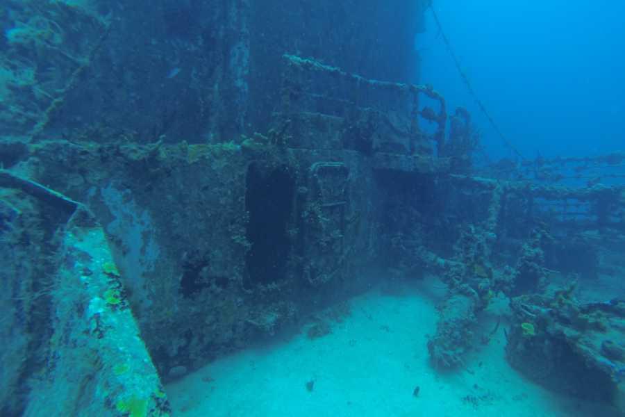 Marina Blue Haiti PADI Plongeur D'épaves