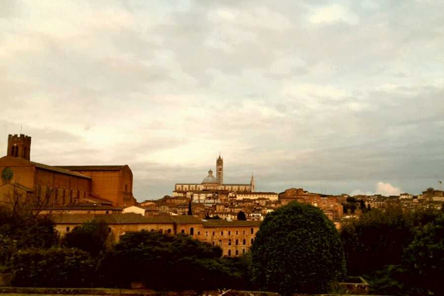 Tuscany on a Budget tours Siena, Cortona, Montepulciano & Val D'Orcia