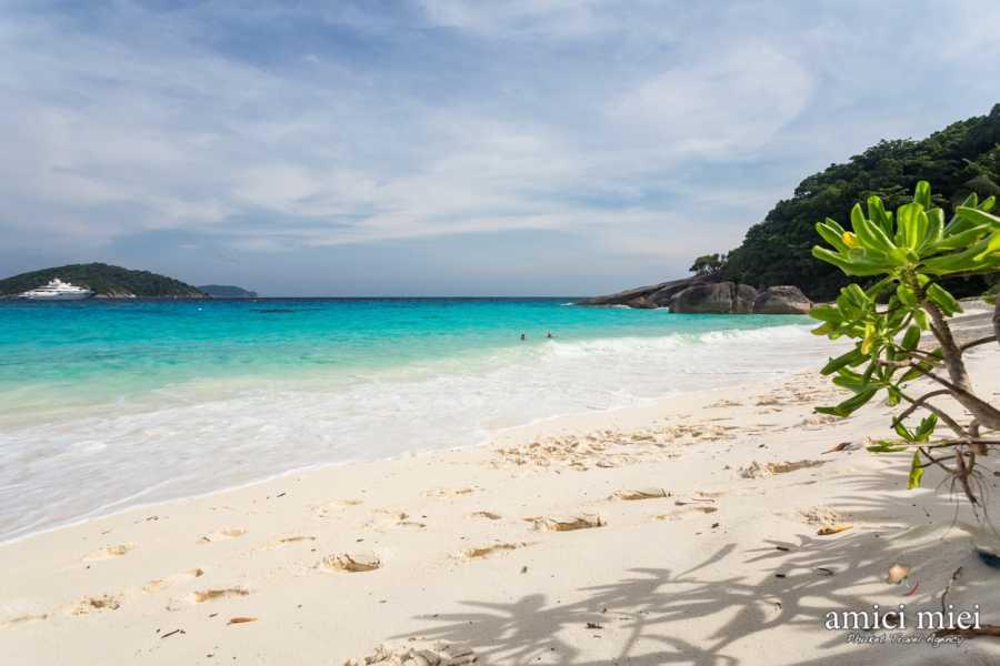 AMICI MIEI PHUKET TRAVEL AGENCY SIMILAN ISLAND ONE DAY TOUR FROM PHUKET O KHAO LAK (AM002)