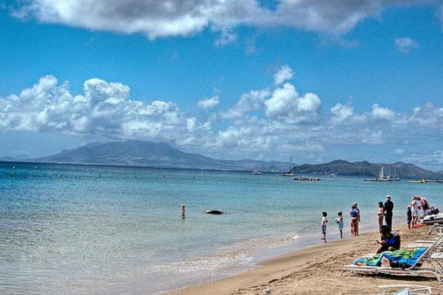 Blue Water Safaris Nevis Plantation  and Beach Experience