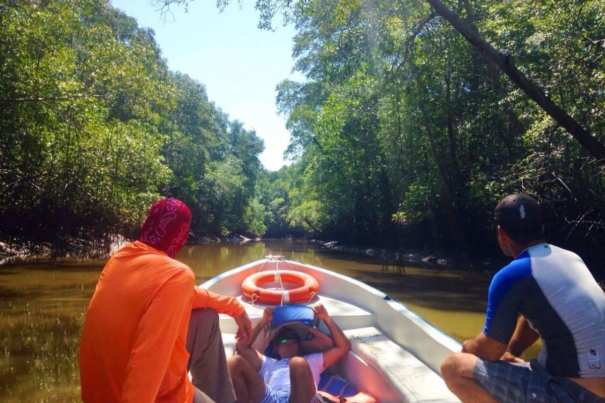 Cacique Cruiser Boat eco Mangrove and Island Tour.