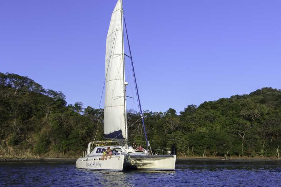 Panache Sailing Catamaran Morning Snorkel Tour, Flamingo Marina, Costa Rica