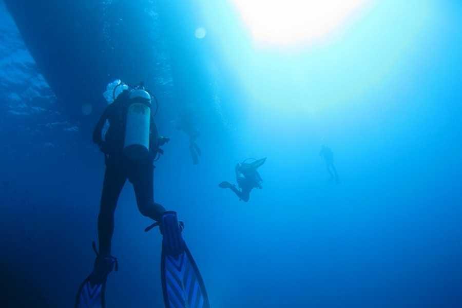 Marina Blue Haiti PADI Deep Diver Spécialité