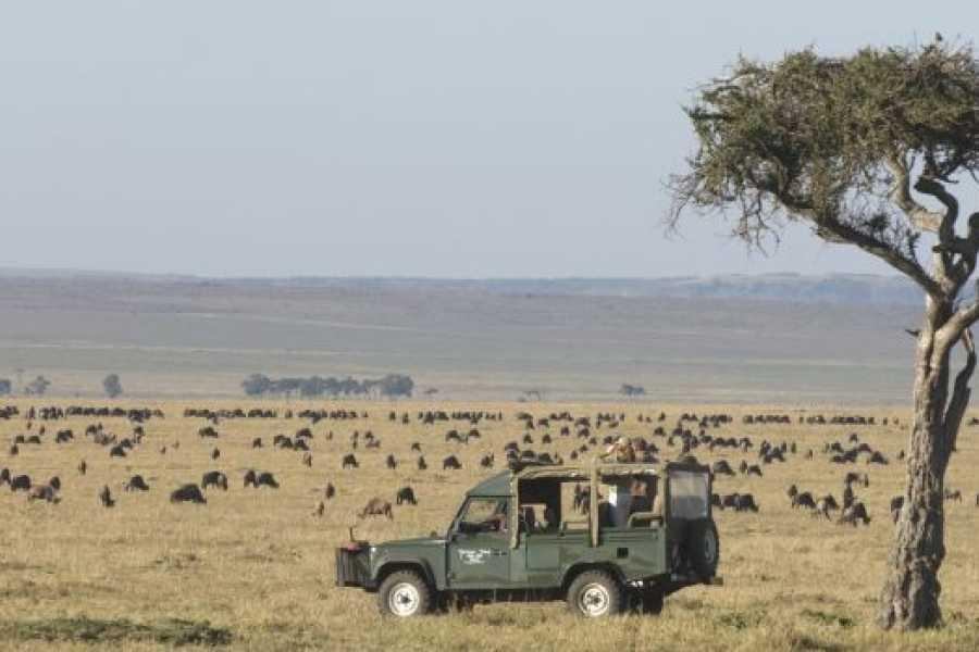 BOOKINGAFRICA.NET Masai Mara - Governors Camp 3 nights
