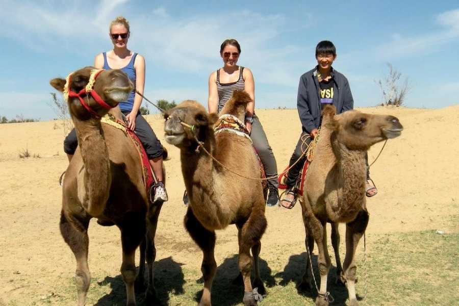 Mongolia Goes Global Kharkhorin weekly tour