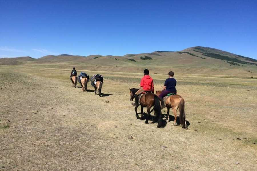 Mongolia Goes Global Ride Mongolian horse