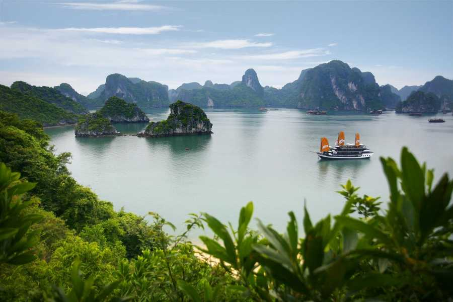 Friends Travel Vietnam La VeLa Premium Cruise | Halong Bay 3D2N