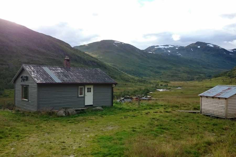 Øystein Ormåsen Leie av hytta i Breidalen