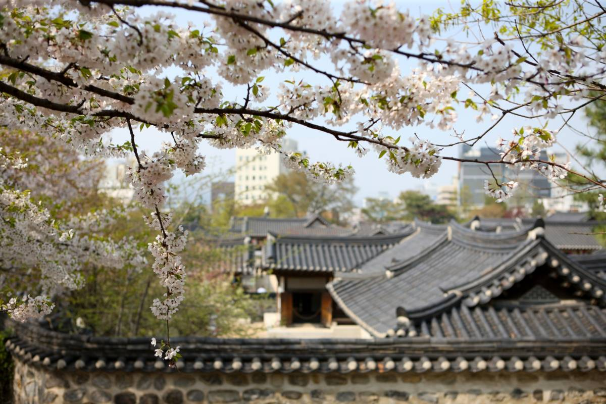 Kim's Travel 04 Tour N Séoul & Visite du village traditionnel