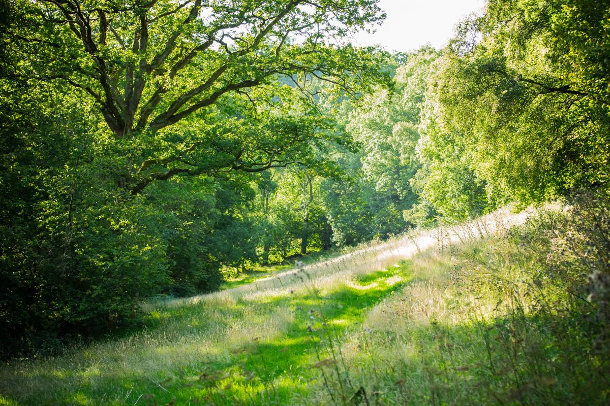 Way2go Adventures Yoga and Meditation Retreat in the Wye Valley - 11th-14th May 2018