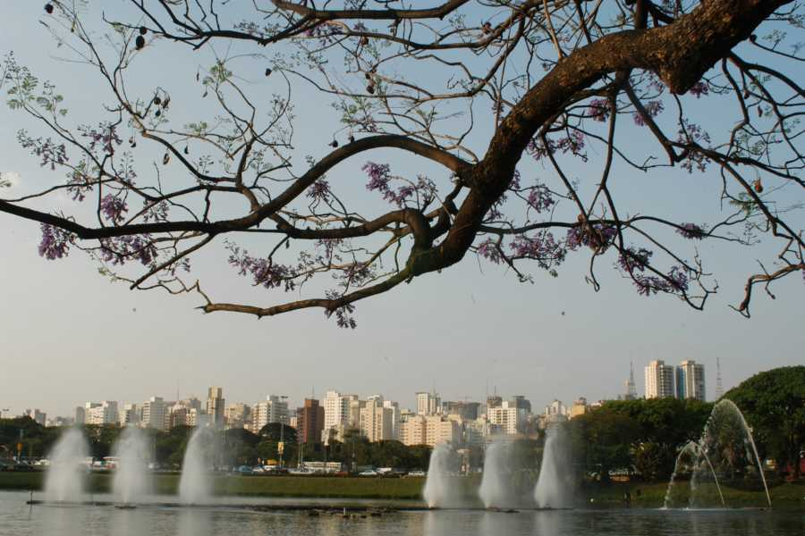 Check Point 1 Old center, Japanese town, Paulista, Jardins and Ibirapuera Park (3h)