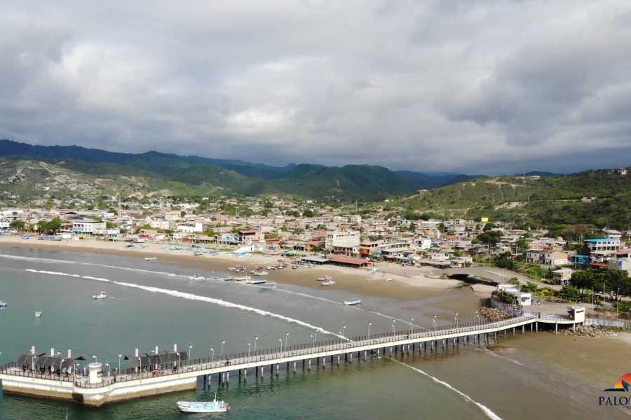 PALO SANTO TRAVEL OBSERVACIÓN DE BALLENAS | PUERTO LOPEZ | ECUADOR
