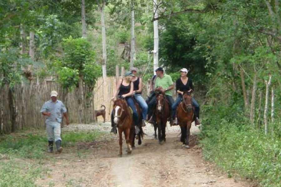 PALO SANTO TRAVEL TOUR BOSQUE LLUVIOSO, CABALLOS Y OBSERVACION DE AVES | PARQUE MACHALILLA