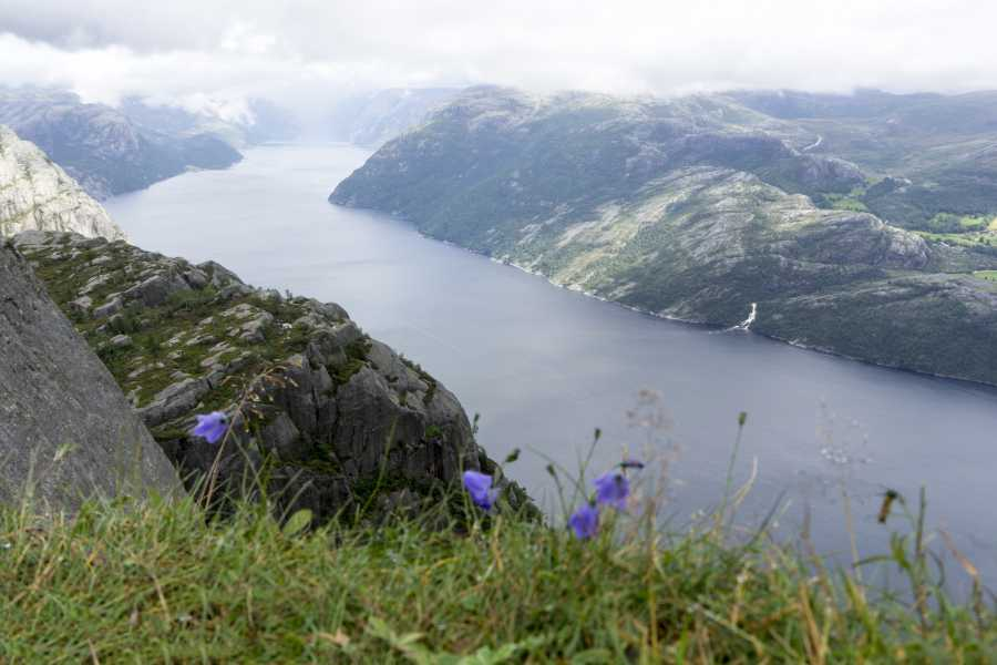 Outdoorlife Norway AS Hiking the Lysefjord - 5-day tour