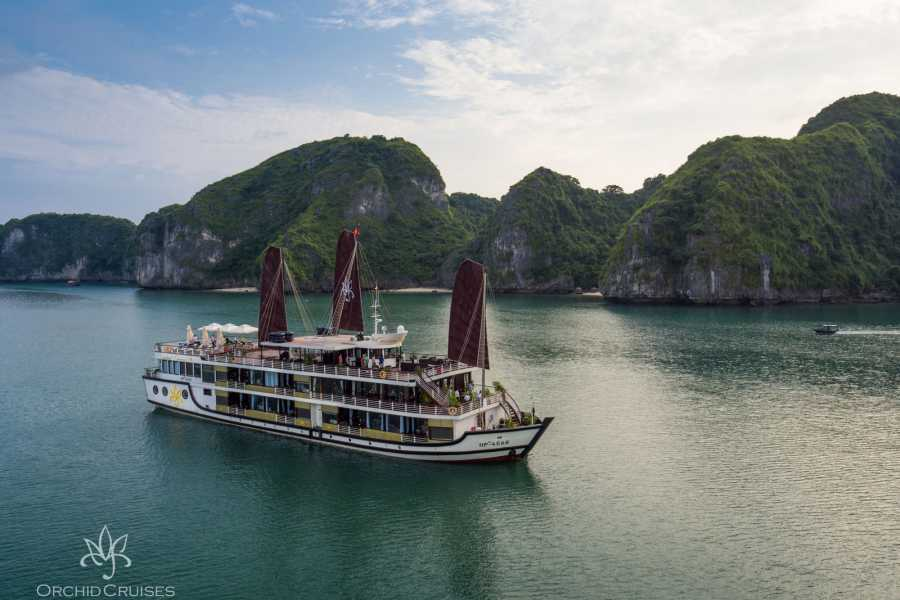 Friends Travel Vietnam Orchid Cruise | Halong Bay 3D2N