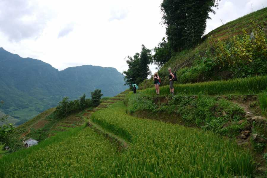 Friends Travel Vietnam Real Sapa Experience 2D-1N by Morning Bus