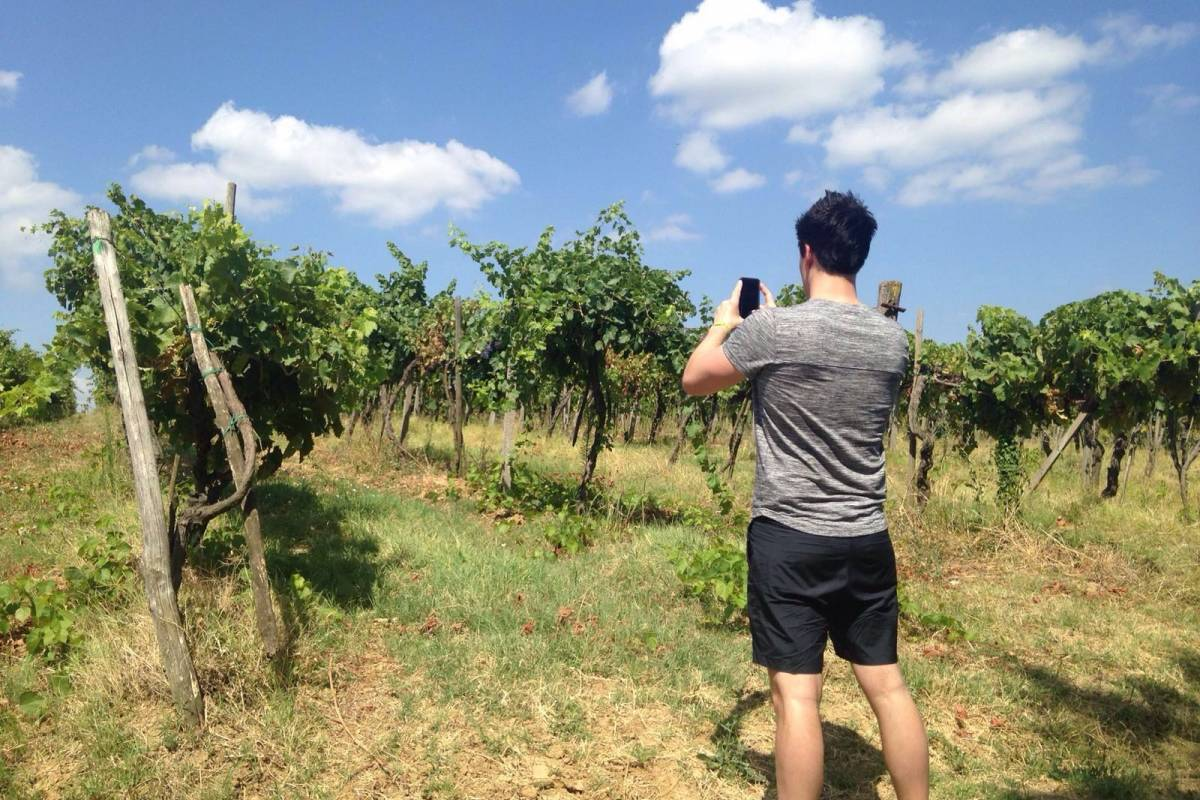 Tuscany on a Budget tours WINE NOT !!! Half day wine tour