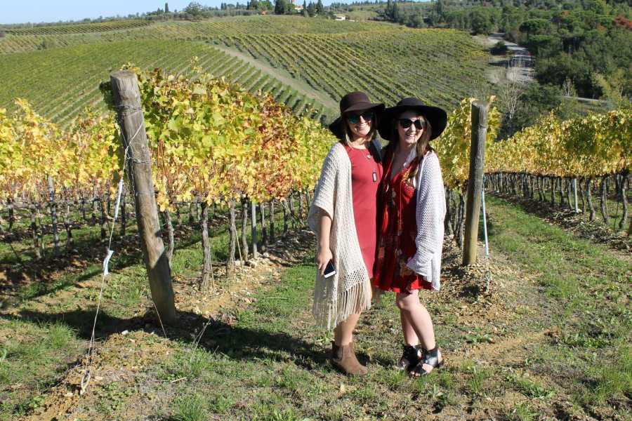 Tuscany on a Budget tours Semi private Half day Tuscany wine tour
