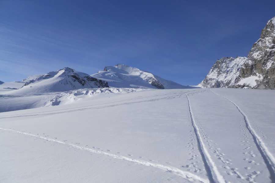 Saas-Fee Guides Fluchthorn 3790m
