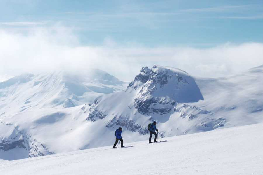Saas-Fee Guides Skitour Fluchthorn 3795m
