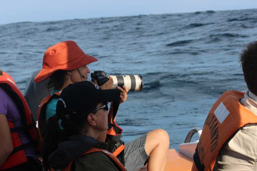 PALO SANTO TRAVEL FULL DAY WITH WHALES | ECUADOR | PUERTO LOPEZ