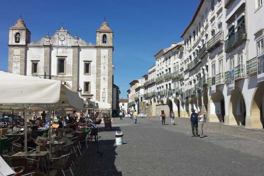 Lisbon on Wheels Amazing Alentejo, Wine & Soul - (2 days tour)