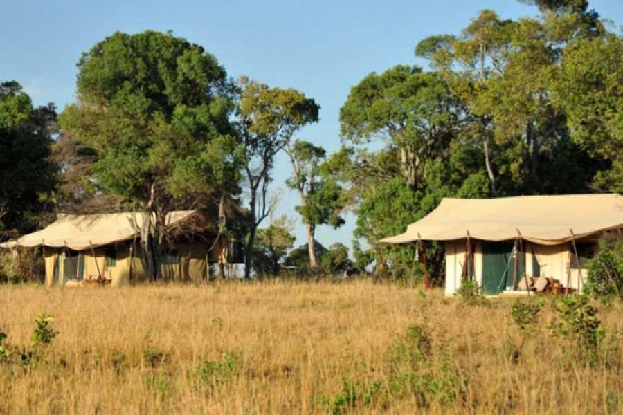 BOOKINGAFRICA.NET Serengeti Migration - Jan to March