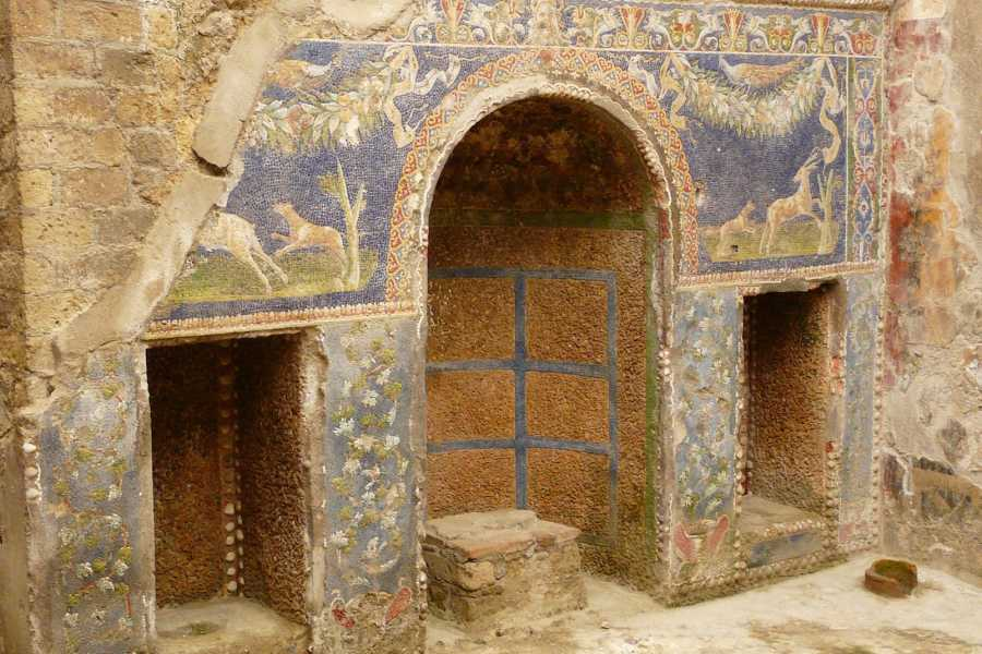 Travel etc Private Herculaneum & Naples Tour