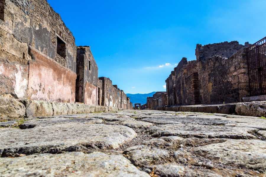 Travel etc Private Pompeii Half day