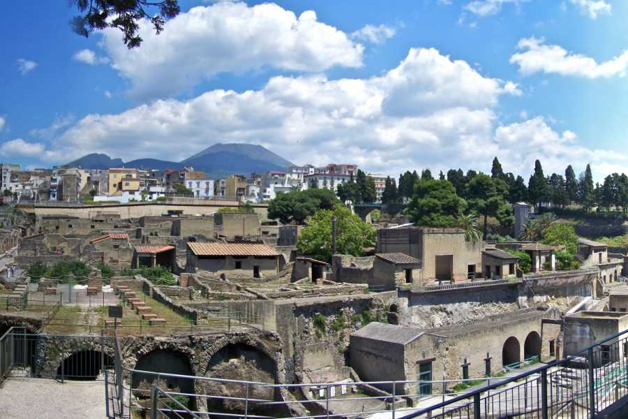 Travel etc Tour Privato Ercolano