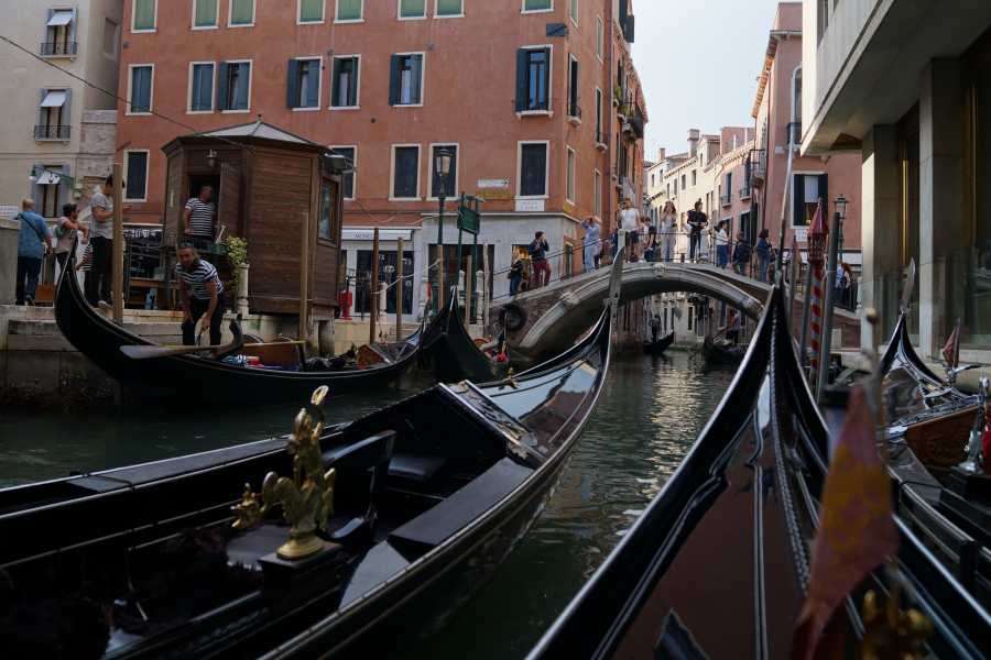 Venice Tours srl Combo  guided tour: Grand Canal Gondola Ride (skip the line) + The Golden Basilica (skip the line)