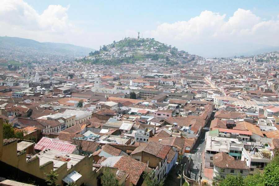 Gray Line Ecuador City Tour: Quito Historico + Mitad del Mundo