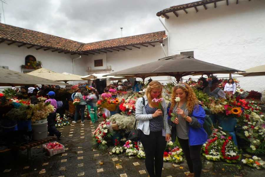 Gray Line Ecuador City Tour Cuenca