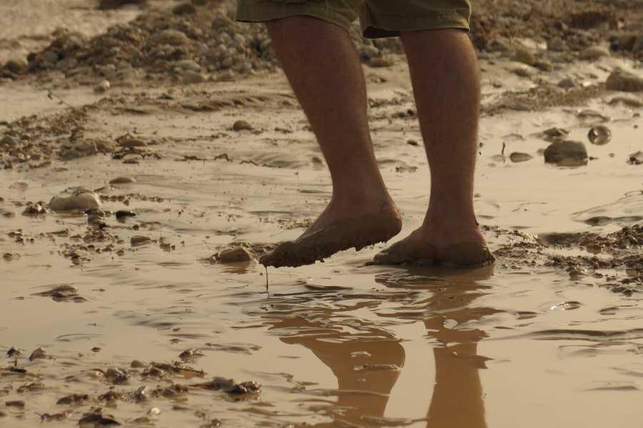Wild-Trails Polowanie na pustynną powódź