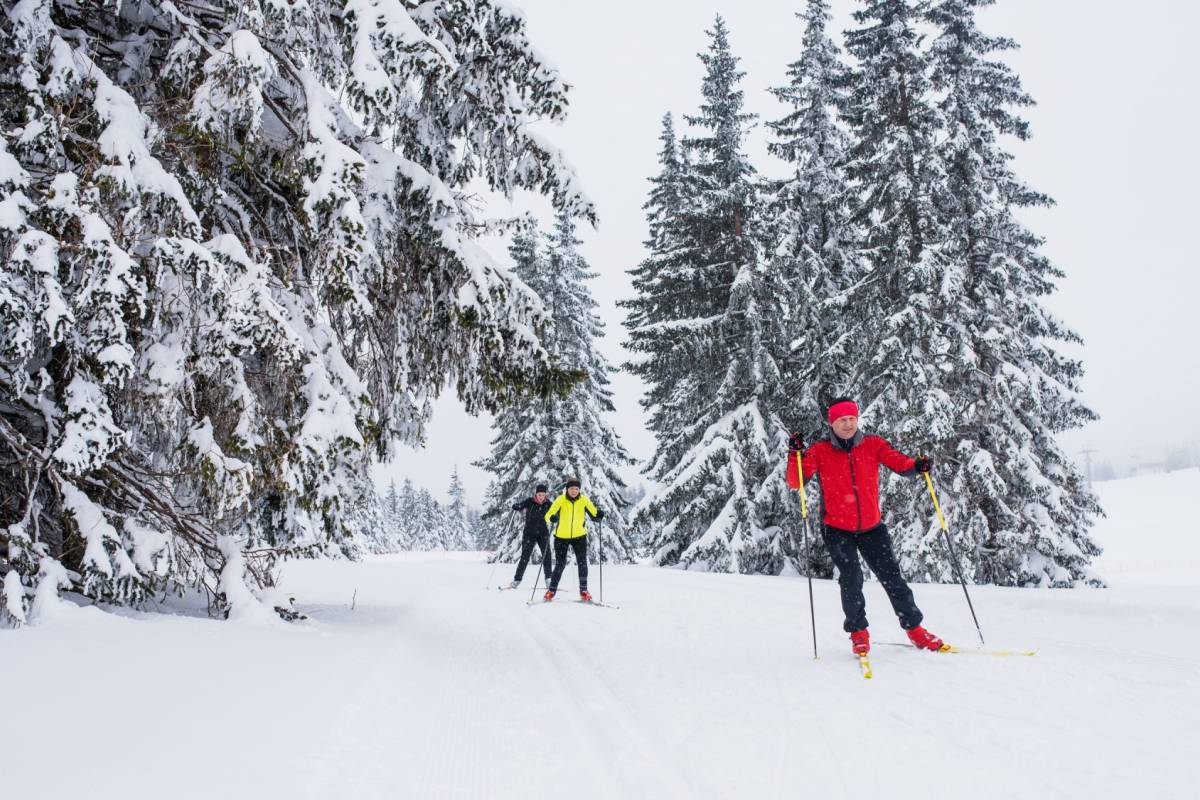 Nature Trips ROGLA CROSS COUNTRY PACKAGE